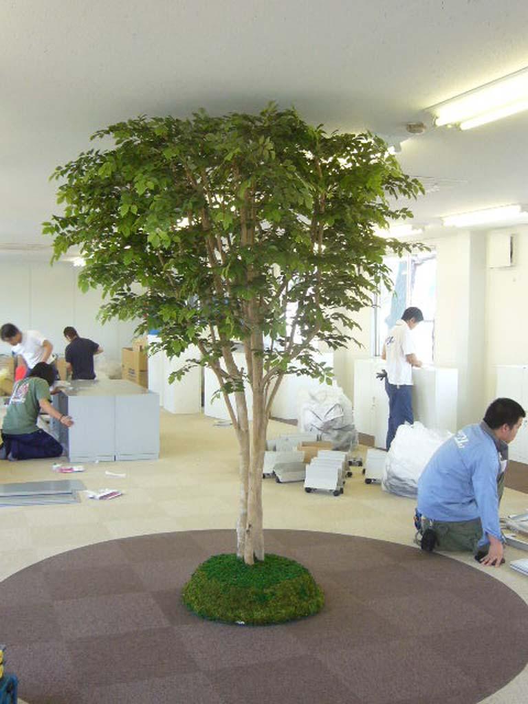 オフィス人工観葉植物、人工樹木 オフィスの人工樹木 人工観葉植物、人工樹木>豊富な